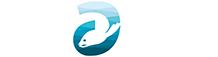 A Seal Zeehondenopvang Stellendam